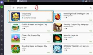 Dragon City per PC