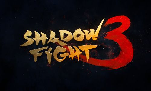 Schaduw gevecht 3